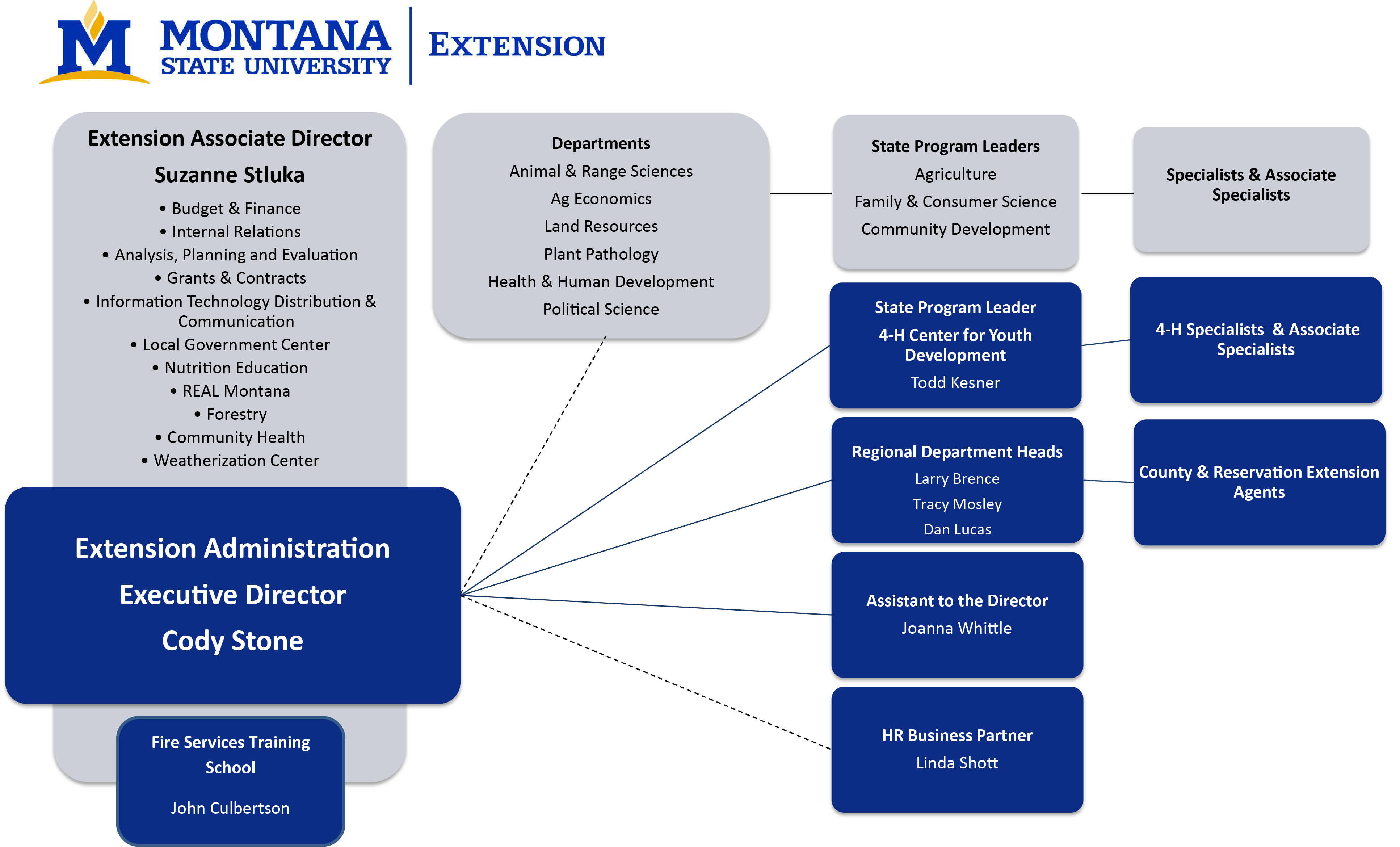 This image describes the administratve organizational structure of MSU Extension.